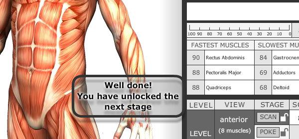 Spielend Anatomie lernen | Herr Pfleger
