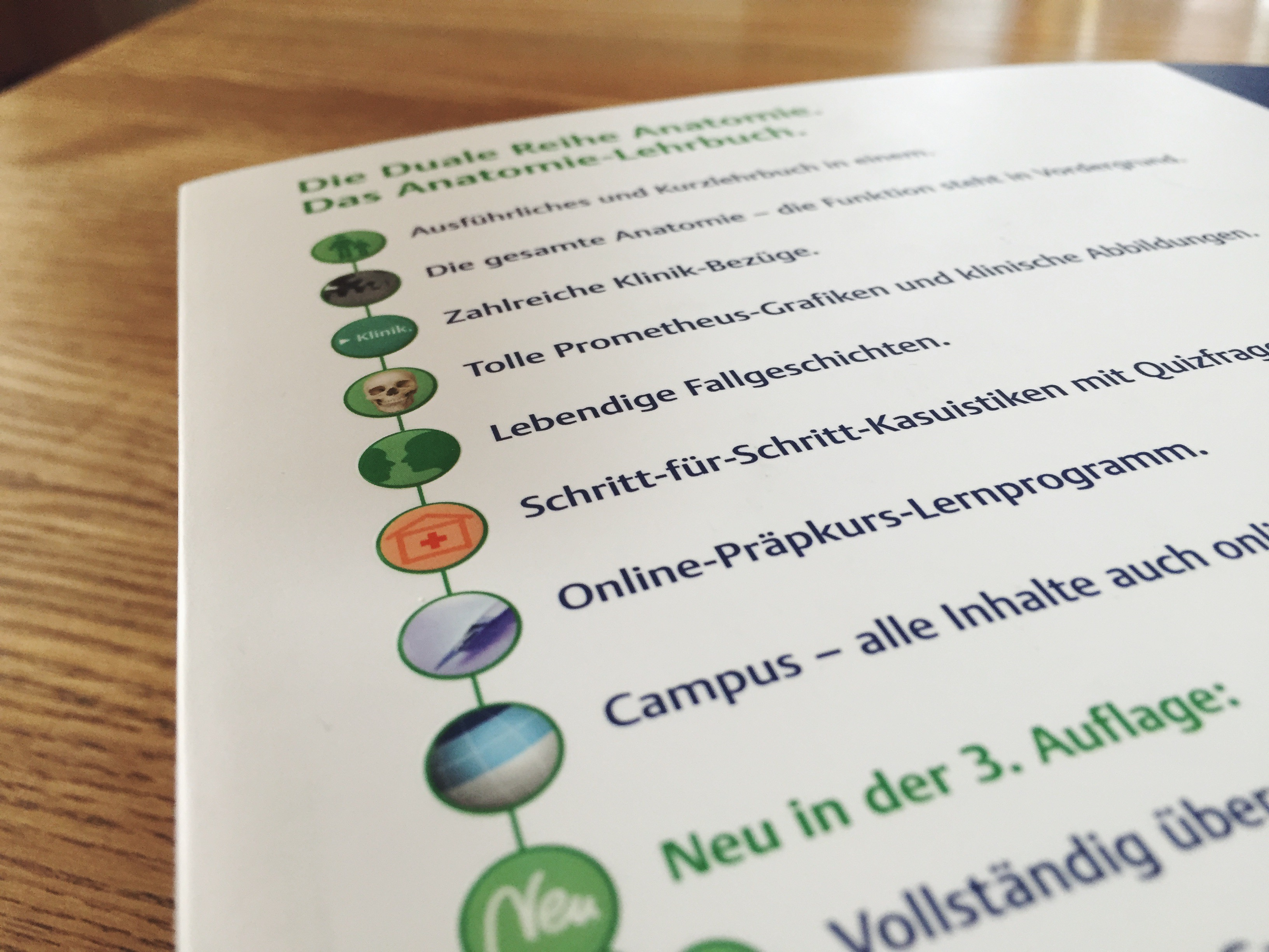 Niedlich Was In Der Anatomie Ist Schlechter Fotos - Menschliche ...